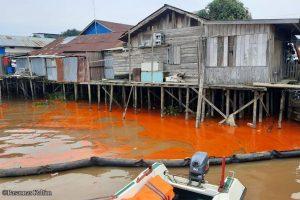 Tumpahan 120 ton minyak sawit mengancam ekosistem sungai mahakam